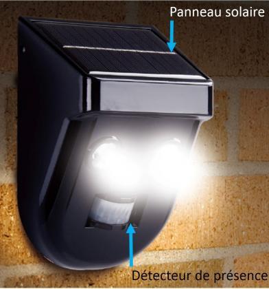 Eclairage Gardien de nuit, Solaire - 200 lumens - IP44 - Détecteur de présence