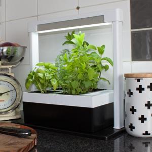 Jardinière d'intérieur autonome, Culture hydroponique - LED lumière naturelle et UV
