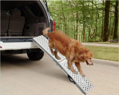 Rampe pliable, Charge max : 200 kg - Pliante - Poignées de transport